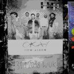 Neuschnee Album Okay WUK 2018